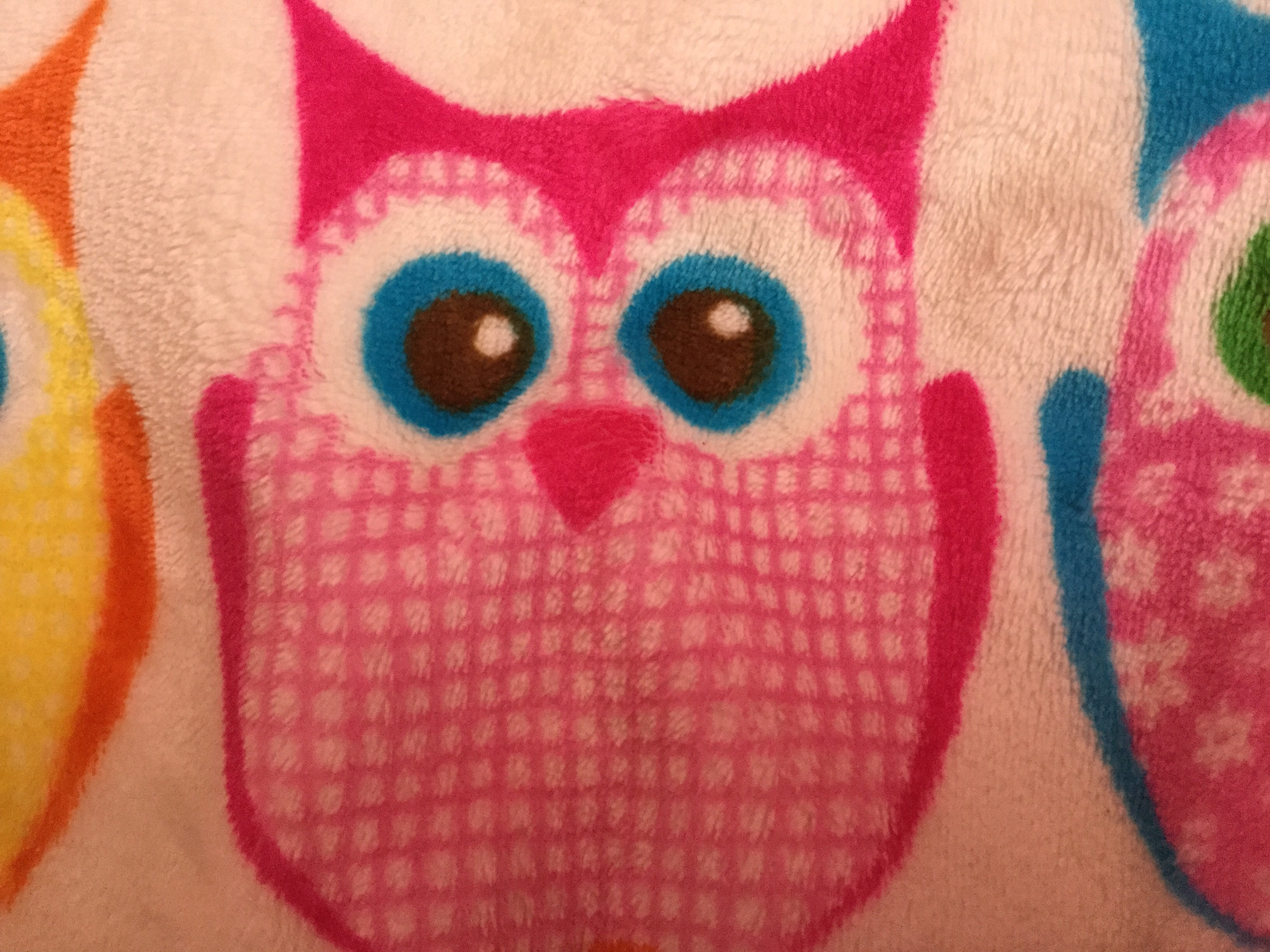 Cute Owls Images CUTE OWL HD Wallpaper And Background Photos