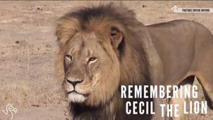 Cecil...R.I.P.