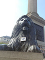 Cecil statue in Trafalgar Square - lions photo