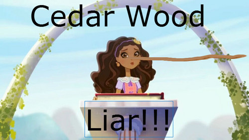 Ever After High wallpaper probably containing a sign, a street, and a bouquet called Cedar Wood