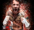 Cm punk wwe 2016 - wwe photo