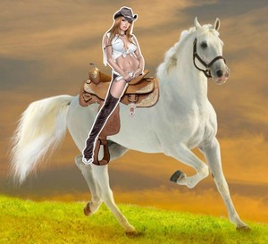 Cowgirl riding her beautiful white horse