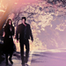 Delena ♥ - damon-and-elena icon