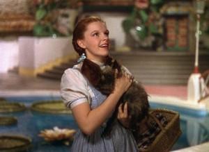 Doothy,Wizard of Oz