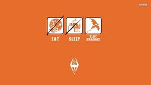 Eat / Sleep / Slay ドラゴン
