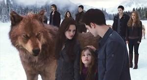 Edward, Bella, Jake and Renesmee