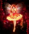 Fiery borboleta