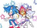 Fighting Duo - sonic-the-hedgehog fan art