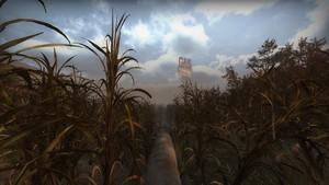 Hard Rain - The Sugar Mill