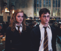 Harmony - Order of the Phoenix - harry-and-hermione photo