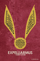 Harry Potter Snitch Spell Poster - harry-potter fan art