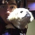He's So Cute!!! - calum-hood photo