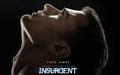 Insurgent Hintergrund - Four