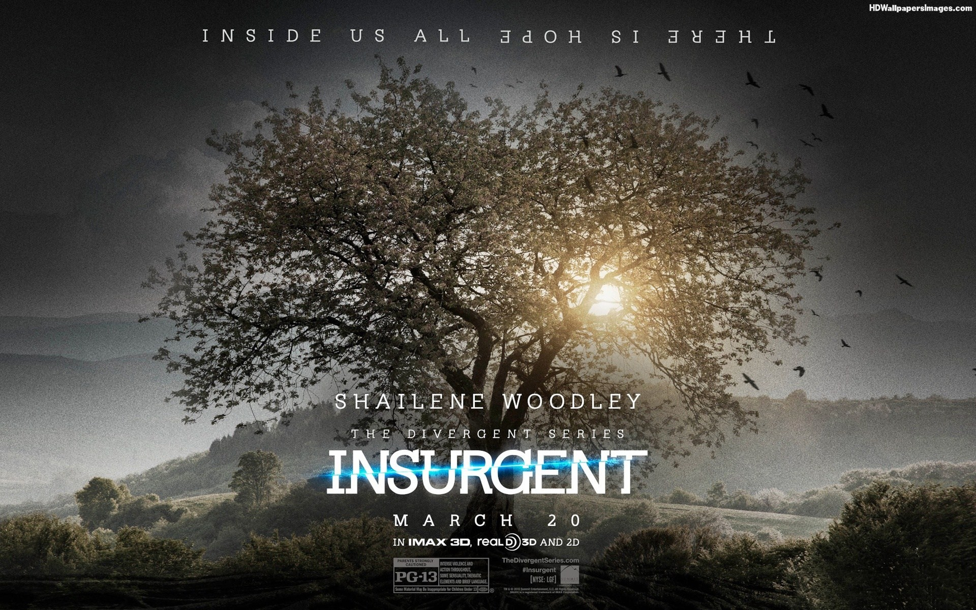 Divergent Images Insurgent Wallpaper HD And Background Photos