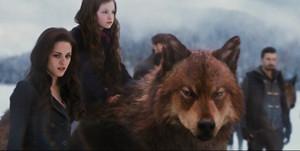 Jake, Bella and Renesmee