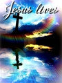 Jesus Lives - christianity photo