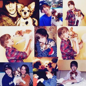 Justin Bieber sammy collage