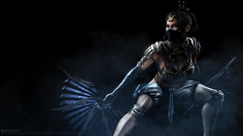 Mortal Kombat kertas dinding probably with a breastplate called Kitana