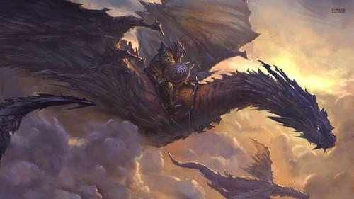 Dragons wallpaper probably containing a red cabbage, a homing pigeon, and a carrier pigeon entitled Knight on a Dragon
