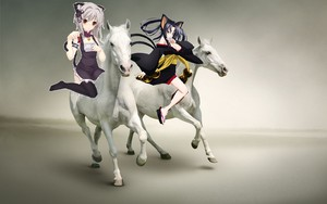 Koneko and Kuroka riding on beautiful white Pferde