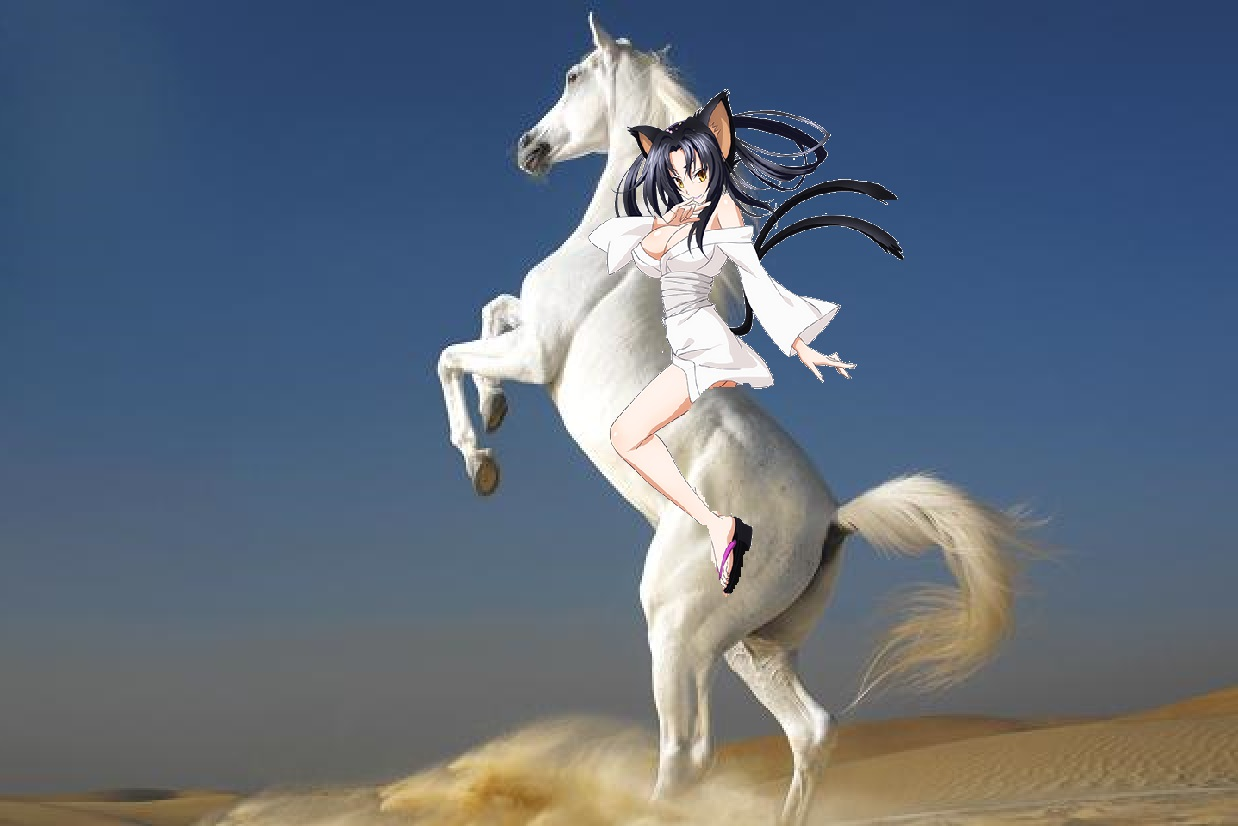 Kuroka ride on a beautiful white stallion