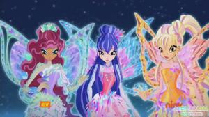 Layla, Musa, Stella Tynix