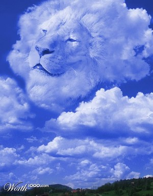 Lion cloud