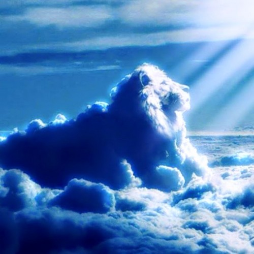 Lions wallpaper entitled Lion nube, nuvola