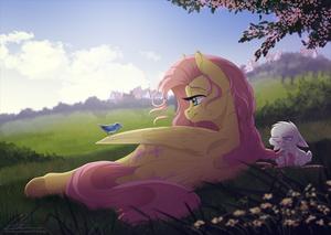 meer pony STUFF