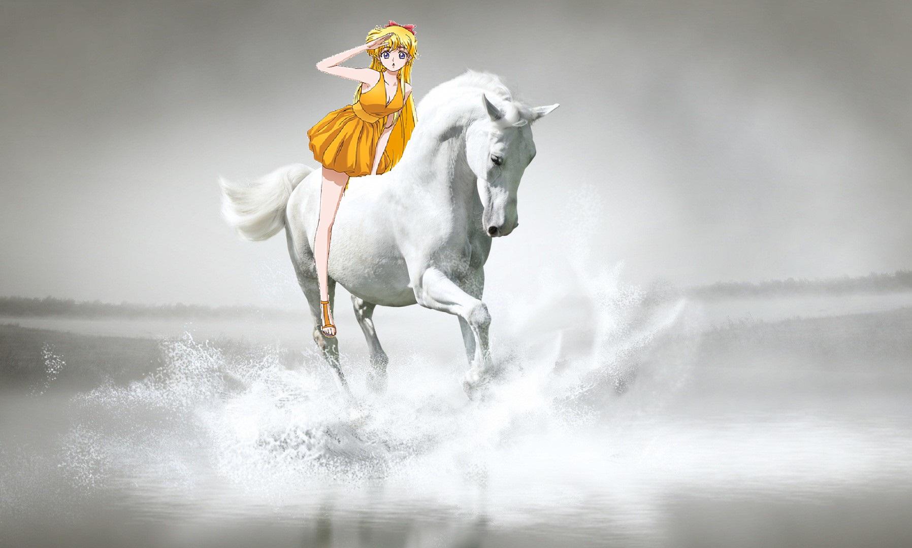 Beautiful white horse paintings - photo#27