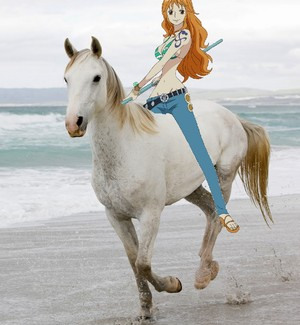 Nami riding her Beautiful White Horse