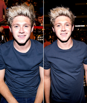Niall at UFC match in Chicago