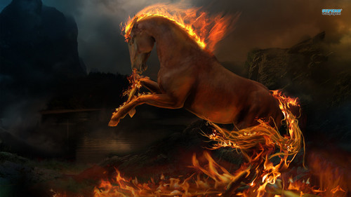 Horses wallpaper containing a fire entitled Night Mare
