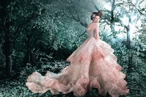 নিন্টেডো Princess Inspired Wedding Dresses