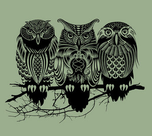 Owls image owls 36275217
