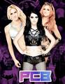 Paige Team