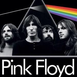 rose Floyd