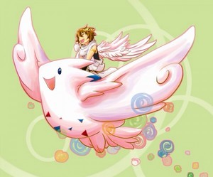 Pit riding a Togekiss