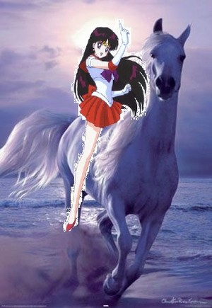 Sailor Mars riding her beautiful white chiến mã, nhốt, steed