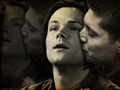 Sam/Dean Wallpaper - wincest wallpaper