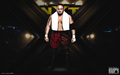 Samoa Joe - wwe wallpaper