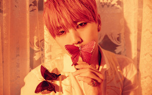 Sandeul's teaser image for ''Sweet Girl''