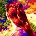 Sansa - sansa-stark icon