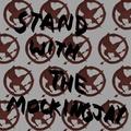 Stand with the Mockingjay - katniss-everdeen fan art