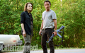 TWD Season 6 - the-walking-dead photo