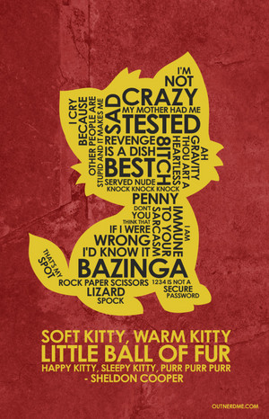 The Big Bang Theory Quote Poster