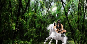 The Kunoichi rides on her Beautiful White Horse