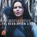 The Revolution Lives - the-hunger-games wallpaper