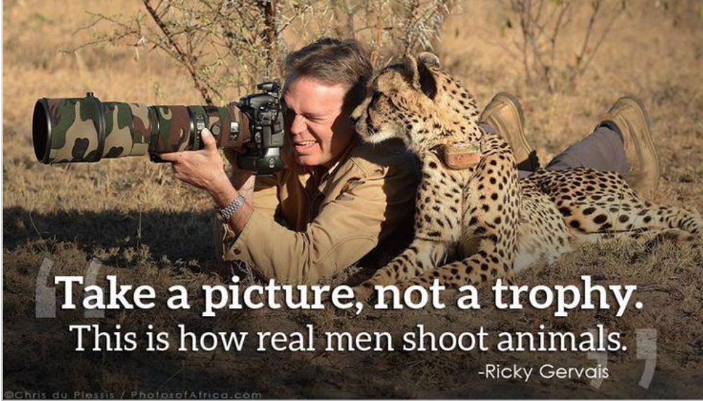shoot animal with camera not gun
