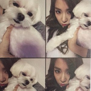 Tiffany Birthday Party Photobook